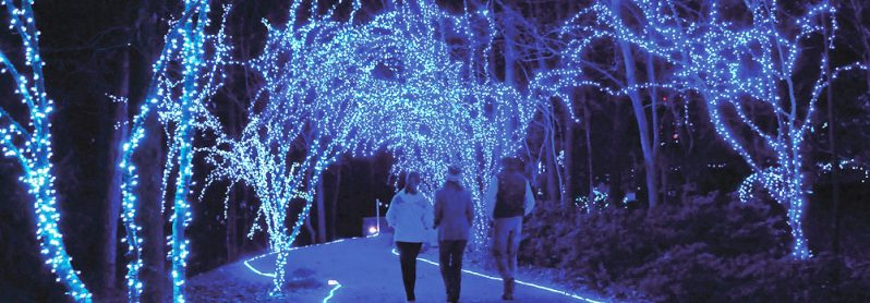 http://www.activeinsert.com/4-amazing-christmas-light-displays-you-must-see/